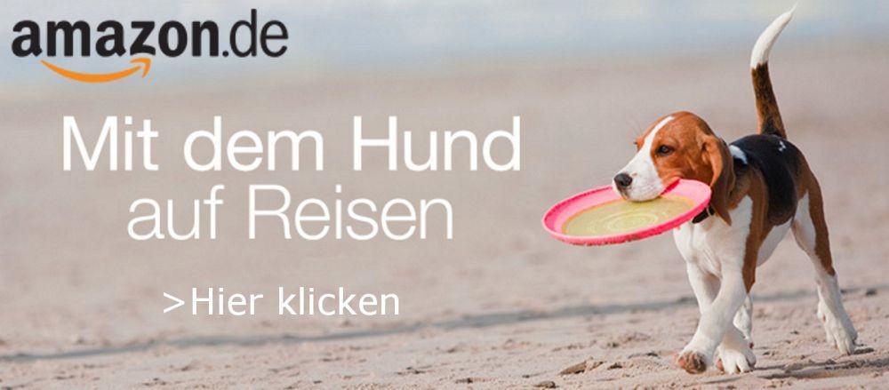 Mit dem Beagle auf Reisen: Amazon.de